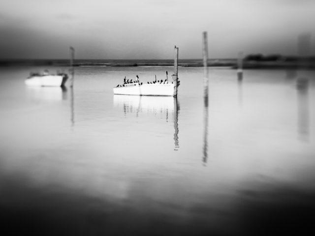Boats at Messick.