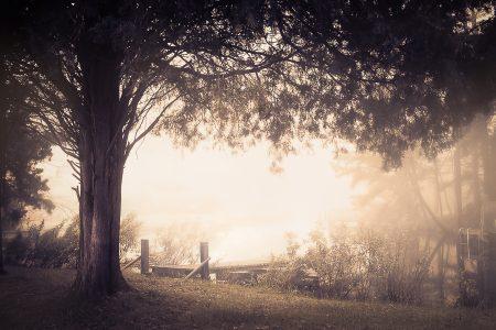 Quiet misty morning.