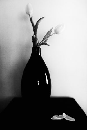Tulips in a teardrop vase.
