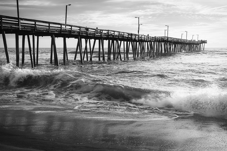 Black white photography art decor laughing seagulls for Virginia beach fishing pier